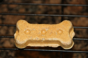 Yummy PB Dog Biscuit